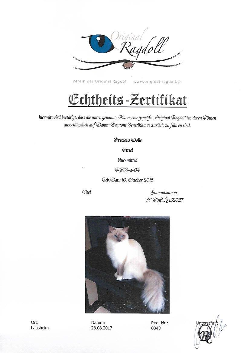 Certificato VDOR svizzero